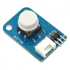 Big Button Input Module