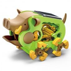 Solar Wild Boar Mini Solar Science Kit